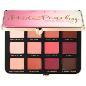 EMPTY Too Faced Eyeshadow Palette